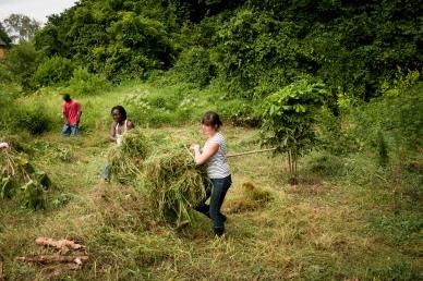 2 Mijikenda Kaya Forest